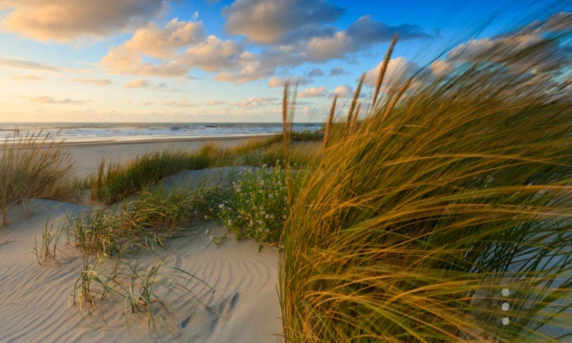 zeeuwse landhoeve